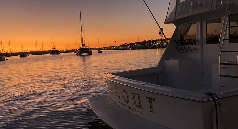 Harbor view of boats at sunset